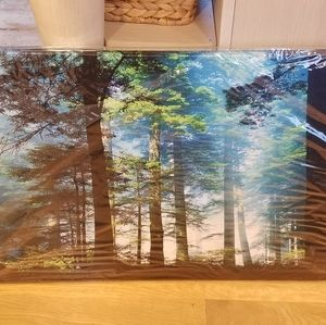 Green blue Forest Canvas Pictures